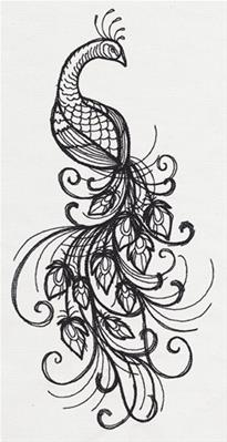Inked Peacock_image