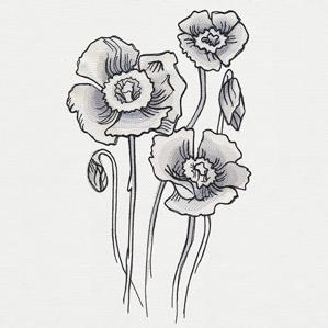 Ink & Wash - Poppies_image