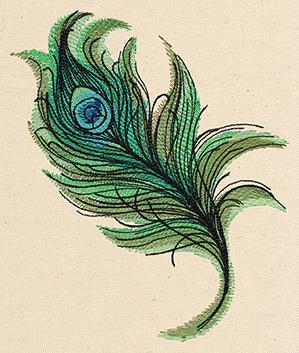 Painted Peacock Feather_image