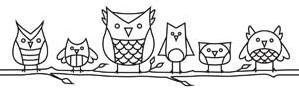 Owl Lined Up_image