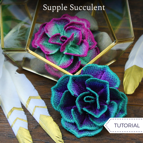 Supple Succulent Lace