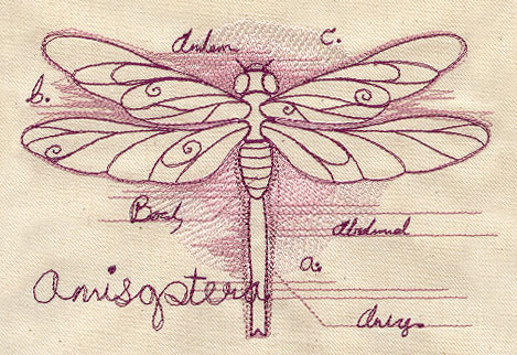 Dragonfly Diagram Urban Threads Unique And Awesome Embroidery Designs