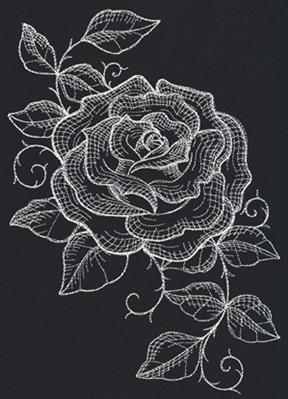 Chalked Rose_image