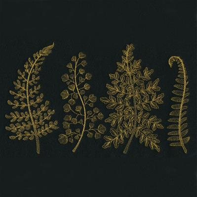 Fern Fronds_image