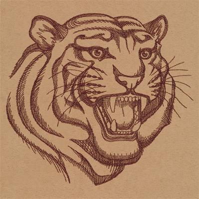 Tiger Talk_image