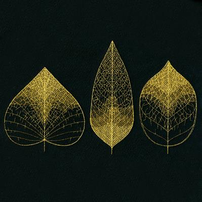 Sheer Delicate Leaf Trio_image
