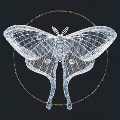 Ghostly Luna Moth_image