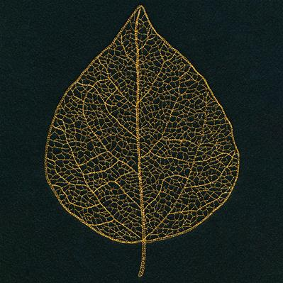 Sensational Skeleton Leaf_image