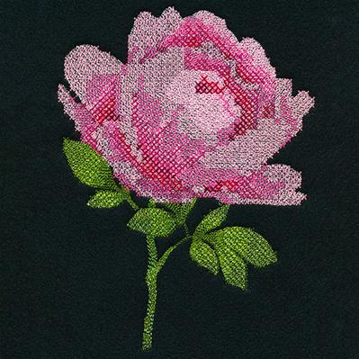 Peony in Pixels (Cross Stitch)_image