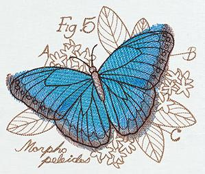 Miniature Menagerie Butterfly Diagram_image
