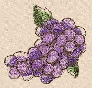 Passport to Italy - Wine Grapes_image