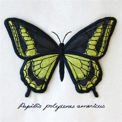 Black Swallowtail Display (3D Applique)_image
