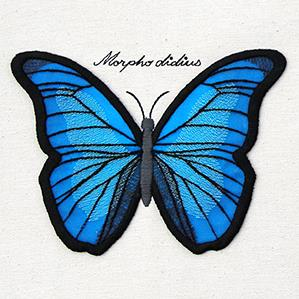 Winged Curiosities - Blue Morpho (3D Applique)_image