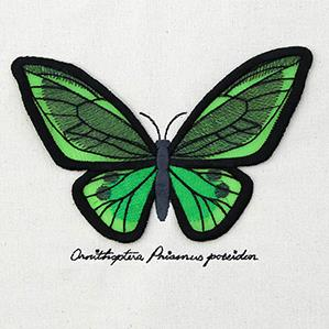 Winged Curiosities - Green Birdwing (3D Applique)_image